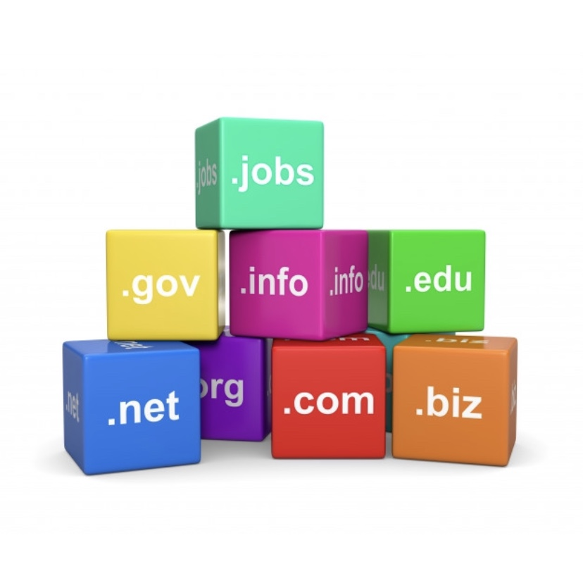 What is a domain investor?